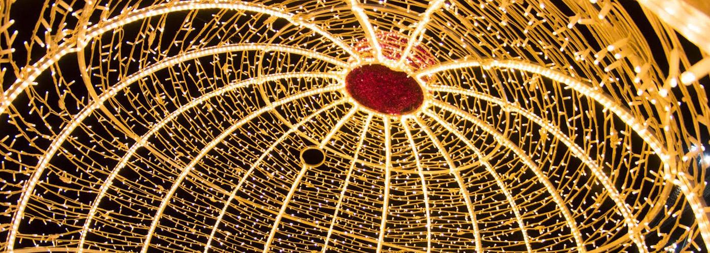 Luminarie e allestimenti decorazioni luminose